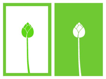 Isolated green lotus buds, vector illustration.