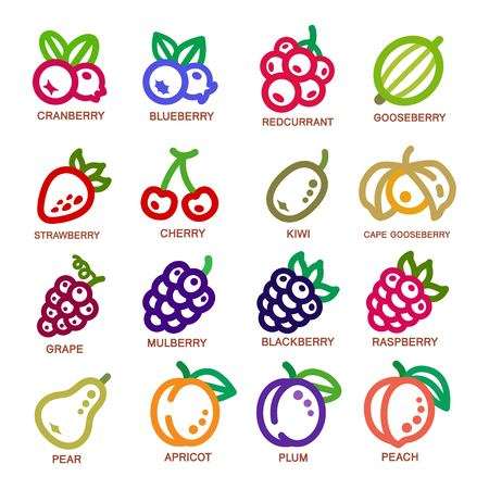 Ensemble d'icônes de fines lignes de fruits, illustration vectorielle
