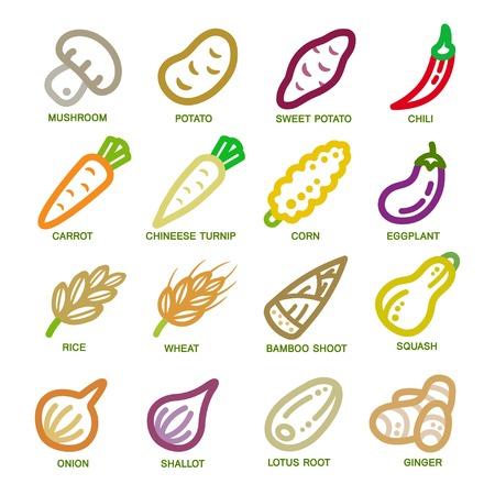 vegetable thin line icon set,vector illustration