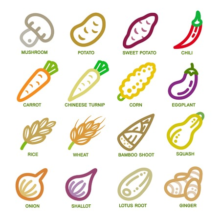 vegetable thin line icon set,vector illustration