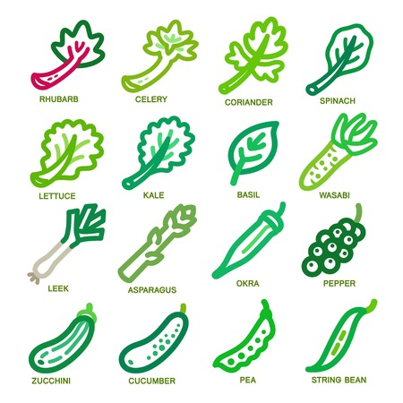Gemüse-dünne Linie Icon-Set, Vektor-Illustration