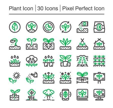 plant line icon,editable stroke,pixel perfect icon