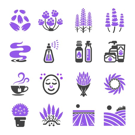 라벤더 꽃 아이콘 세트 스톡 콘텐츠 - 101853689