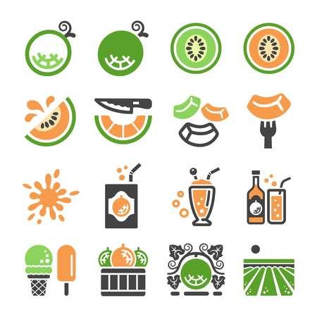 melon,cantaloupe icon set,vector and illustration