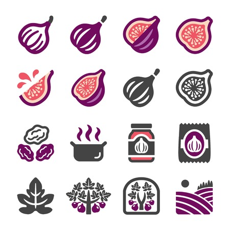 fig icon set,vector and illustration