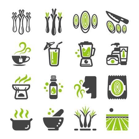 lemongrass icon set,vector and illustration