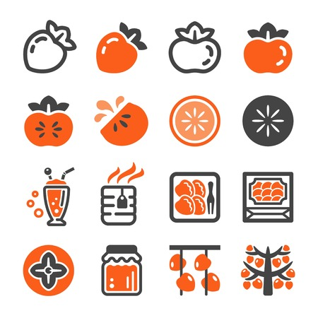 persimmon icon set,vector and illustration