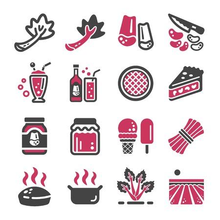 rhubarb icon set,vector and illustration