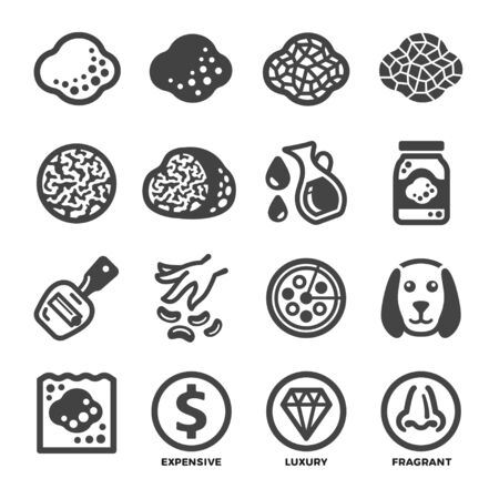 truffle mushroom icon set,vector and illustration