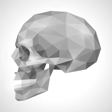 skull cranium: Human skull in origami style