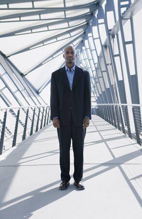 effrontery: Businessman standing on a walk bridge
