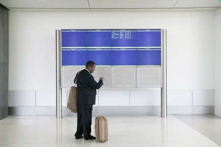 effrontery: Side profile of a businessman standing in an airport with luggage