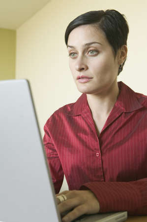 effrontery: Young businesswoman using a laptop LANG_EVOIMAGES