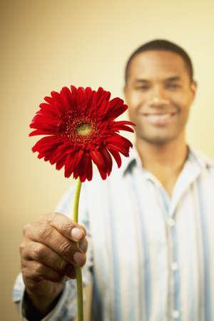 mid adult man: Hombre de mediana edad que sostiene una flor sonriente