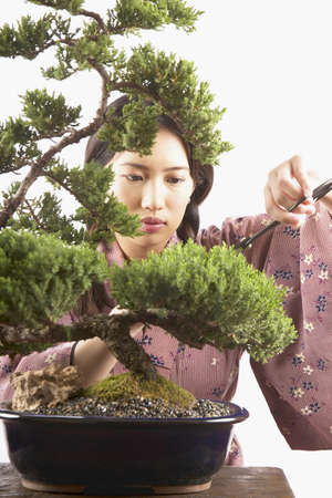 feng shui: Young woman trimming a bonsai tree LANG_EVOIMAGES