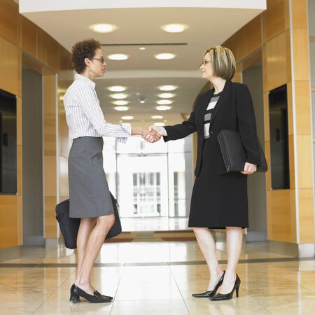 Side profile of two businesswomen shaking hands in an office Stock Photo - 16046971
