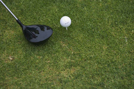 Still life of golf club and ball on the green Stock Photo - 16071712