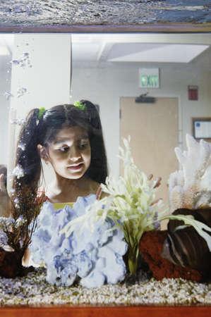 all under 18: Girl watching fish in aquarium
