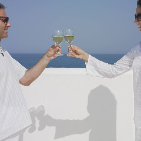 Couple toasting wine glasses Stock Photo - 16073753