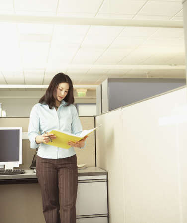 Businesswoman examining folder Stock Photo - 16089296