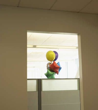office cubicle: Bunch of balloons in office cubicle