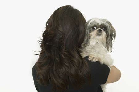Studio shot of woman with Shih-Tzu Stock Photo - 16090838