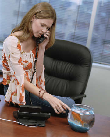 Businesswomen talking on telephone looking at goldfish bowl, Dallas, Texas, United States Stock Photo - 16090961