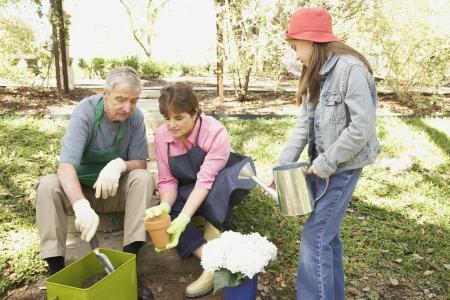 Hispanic grandparents and granddaughter gardening Stock Photo - 16091299
