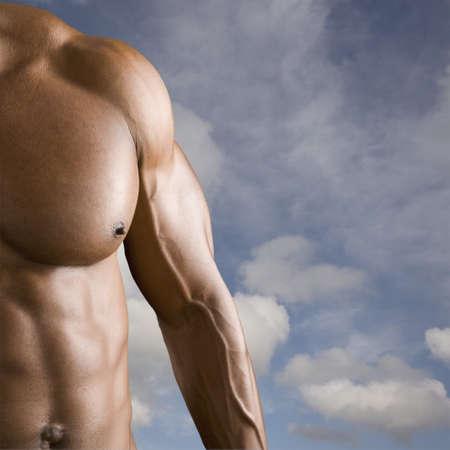 north western european descent: Male body builderís arm and torso