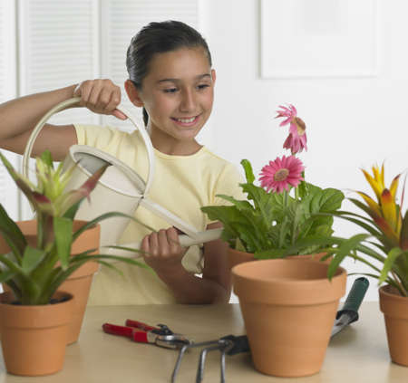Hispanic girl watering potted plant indoors Stock Photo - 16092361