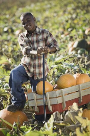 African boy standing with wagon in pumpkin patch Stock Photo - 16093075