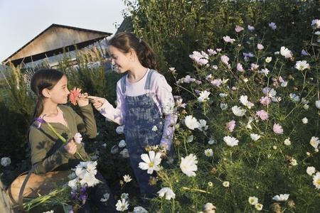 pacific islander: Two Pacific Islander girls picking wildflowers with basket