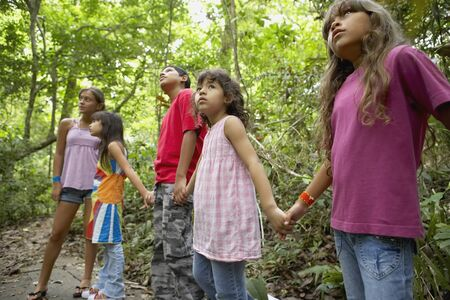 Hispanic children exploring woods Stock Photo - 16095263