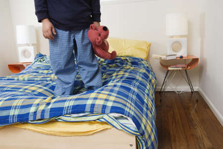 stuffed animal: Boy standing on bed holding stuffed animal LANG_EVOIMAGES