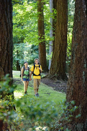 above 18: Couple hiking in forest
