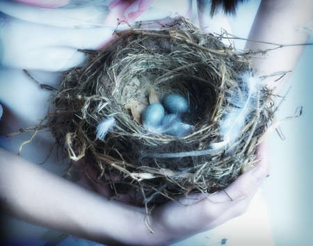 pacific islander ethnicity: Close up of birds nest in young womans arms LANG_EVOIMAGES