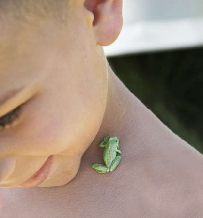 tiny frog: Tiny frog on young boyÃŒs neck