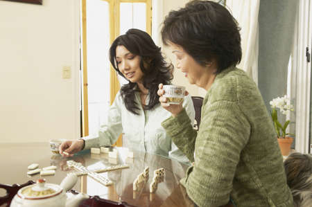 chinese american ethnicity: Asian mother and adult daughter playing dominoes