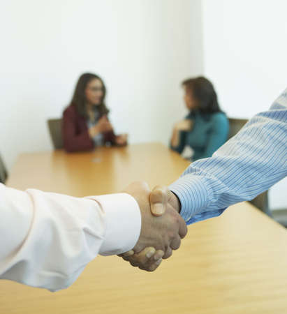 north western european descent: Close up of two businessmen shaking hands