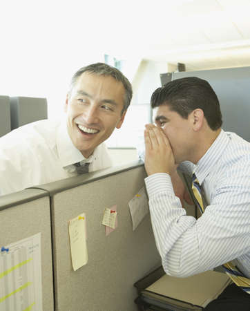 north western european descent: Two businessmen whispering over cubicle wall