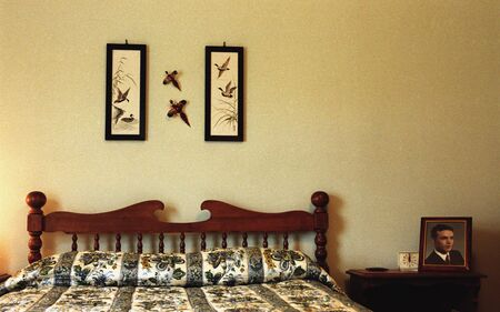 furtive: Made bed with pictures of birds on wall