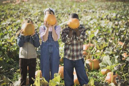 Three children holding pumpkins in pumpkin patch