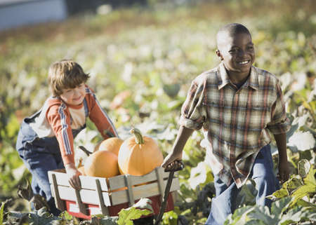 Two boys pulling wagon through pumpkin patch Stock Photo
