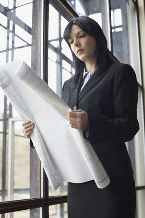 only mid adult women: Businesswoman looking at blueprints