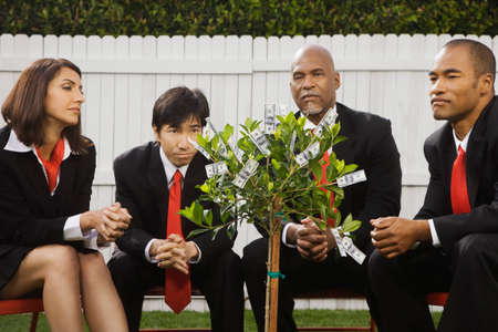 conferring: Multi-ethnic businesspeople looking at money tree