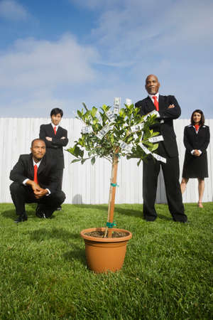 dollarbill: Multi-ethnic businesspeople looking at money tree
