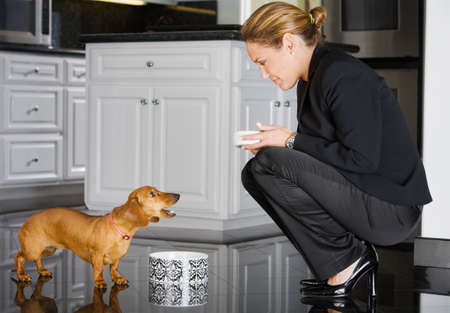 pleading: Hispanic businesswoman feeding dog