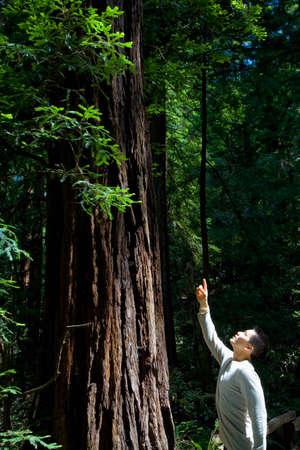 stepping: Asian man pointing up at tree