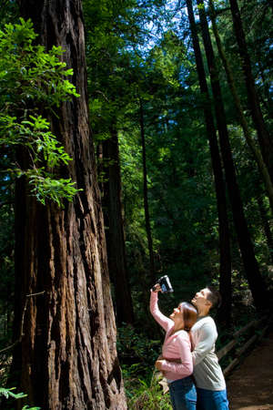 environmentalism: Asian couple video recording tree LANG_EVOIMAGES