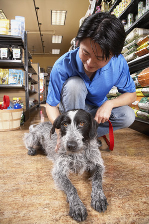 Asian man petting dog in pet store 스톡 콘텐츠